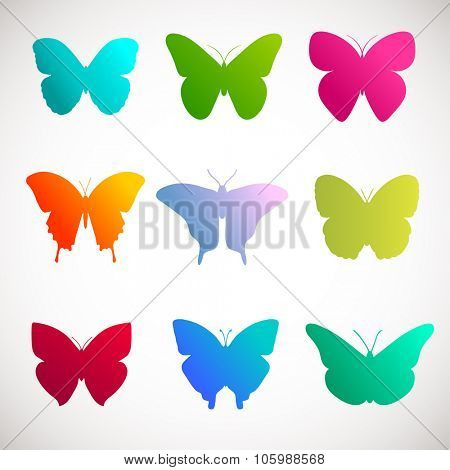 Vector collection of butterflies. Bright colors  butterflies on white background. Pink, green, yellow and violet colors butterflies illustration