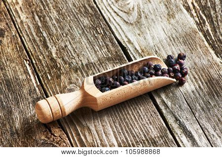 Wooden scoop with dried juniper berries over rustic background