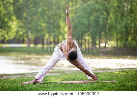 Yoga Triangle Variation Pose