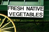 Fresh Native Vegetables for Sale