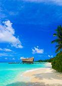 pic of kuramathi  - Diving club on a tropical island  - JPG