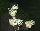 picture of frankenstein  - A Frankenstein - JPG
