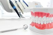 Clean teeth denture, dental jaw model, mirror and dentistry instruments in dentists office.  poster