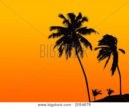 Summer Tropical Scene