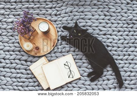poster of Black cat relaxing on knitted woolen chunky blanket. Book and wooden tray with home decor on the war