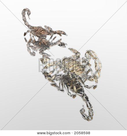 Scorpions Fight_Color
