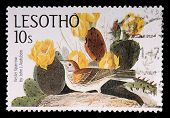 A 10-sente Stamp Printed In The Kingdom Of Lesotho