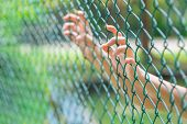 Child Little Girl Hand Holding Steel Cage To Child Abduction Or Children Imprisoned Concept poster