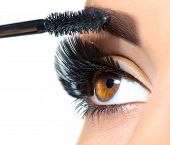 Mascara Applying. Long Lashes closeup. Mascara Brush. Eyelashes extensions. Makeup for Brown Eyes. E poster
