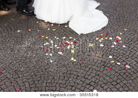 Wedding Rice In Front Of Bride