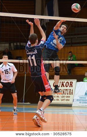 KAPOSVAR, HUNGARY - FEBRUARY 27: Andras Geiger (R) in action at a Hungarian volleyball National Championship game Kaposvar (blue) vs. Csepel ( deep blue), on February 27, 2012 in Kaposvar, Hungary.