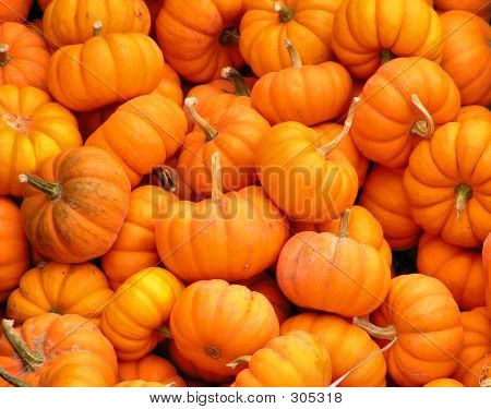 Pile Of Pumpkins