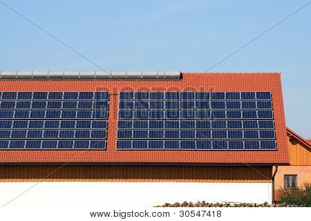 Solar Plants On The Roof
