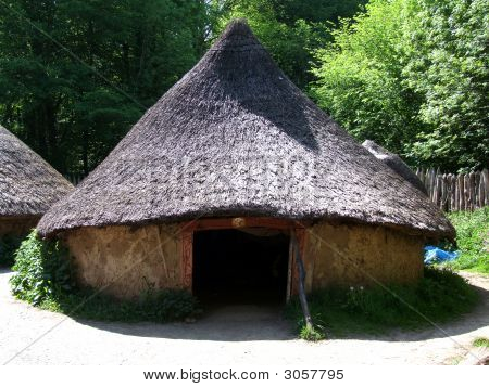 Celtic Living House