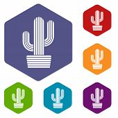 Tall Cactus Icon. Simple Illustration Of Tall Cactus Vector Icon For Web poster