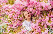Pink Is My Favorite. Little Girl Enjoy Spring. Kid On Pink Flowers Of Sakura Tree Background. Kid En poster