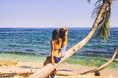 Two Girls Sitting On Palm Tree On The Beach. Healthy People Lifestyle. Girls Relaxing On The Beach.  poster