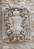 stock photo of armorial-bearings  - Close up of a coat of arms - JPG