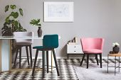 Colorful Velvet Chairs In Fashionable Grey Living Room Interior With Glass Table poster