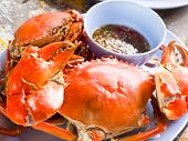 foto of cooked crab  - Steamed sea crab with chilli spicy sauce - JPG