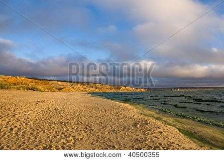 Sandy Beach In Autumn