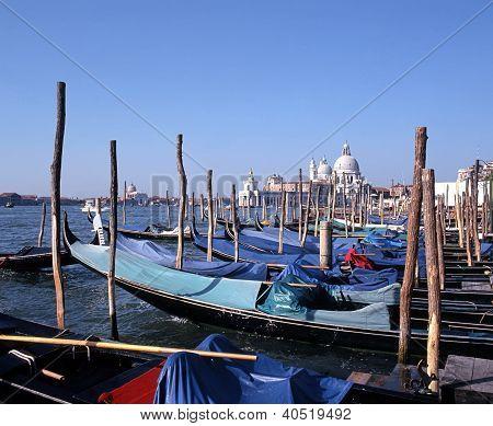 Gondolas & Santa Maria Basilica, Venice, Italy.