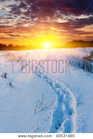 Scene with snow-path in steppe on sunset background