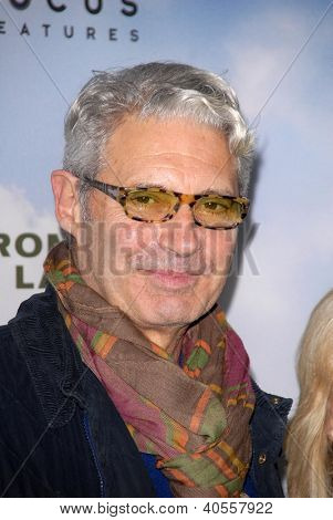 LOS ANGELES - DEC 6:  Michael Nouri arrives at the 'Promised Land' Premiere at Directors Guild of America on December 6, 2012 in Los Angeles, CA