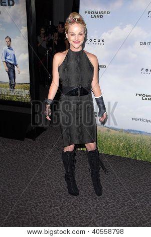 LOS ANGELES - DEC 6:  Dana Daurey arrives at the 'Promised Land' Premiere at Directors Guild of America on December 6, 2012 in Los Angeles, CA