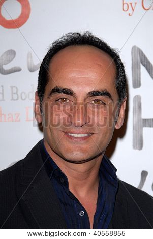 LOS ANGELES - DEC 12:  Navid Negahban arrives to the NOH8 4th Anniversary Party at Avalon on December 12, 2012 in Los Angeles, CA