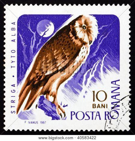 Postage stamp Romania 1967 Barn Owl, Bird of Prey