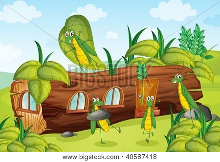 Illustration of grasshoppers and a house in a beautiful nature