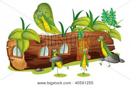 Illustration of grasshoppers and a wood house on a white background