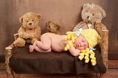 stock photo of stuffed animals  - Newborn baby girl dressed as Goldilocks and sleeping on a rustic wooden bed surrounded by 3 plush toy bears - JPG