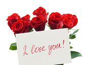 pic of red rose flower  - Card and roses isolated on white background - JPG