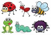 image of creepy crawlies  - Illustration of various animals and insects on white - JPG