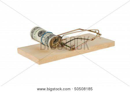 Mausefalle mit Dollar