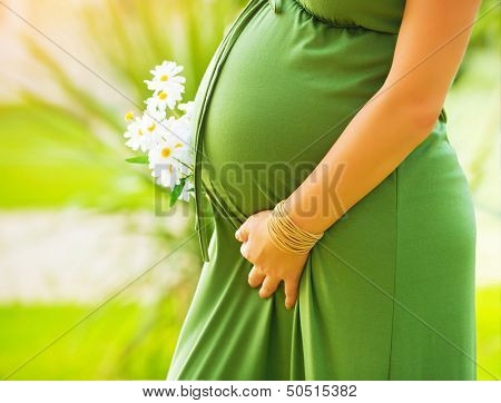 Closeup on tummy of pregnant woman, wearing long green dress, holding in hands bouquet of daisy flowers outdoors, new life concept