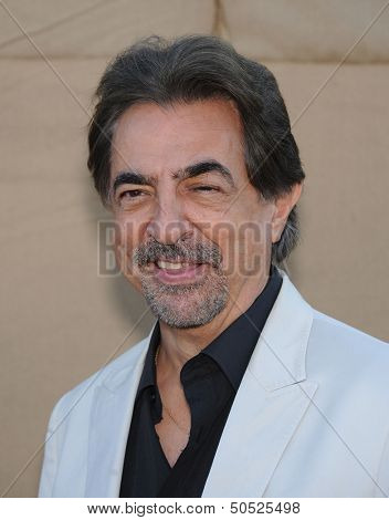LOS ANGELES - AUG 04:  Joe Mantegna arrives to CBS Showtime CW All Star Winter TCA Party 2013  on July 29, 2013 in Beverly Hills, CA