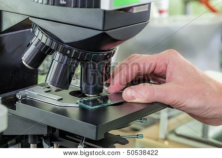 Testing Specimen With The Microscope