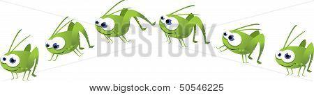 Grasshopper poses