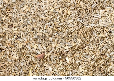 Wooden Mulch On The Ground In A Garden