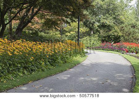 Flowers In Bloom Along Neighborhood Park