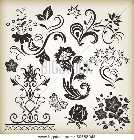 Floral vintage vector design elements isolated on beige background. Set 25.