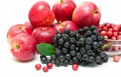 stock photo of chokeberry  - chokeberry red apples and cranberries close - JPG