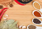 Colorful herbs and spices selection. Aromatic ingredients on cutting board with copyspace