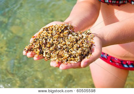 Small Pebble In The Hands Of The Sea