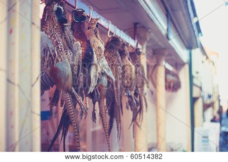 Pheasants Hanging Outside Butcher's Shop