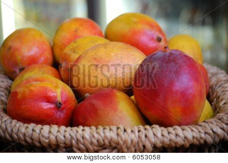 Basket of fresh ripe mangoes