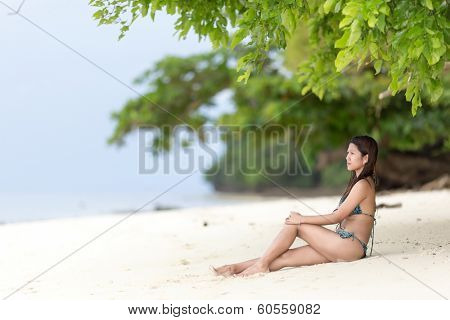 Beautiful Filipina woman sitting in her bikini on a tropical beach in her bikini on the golden sand in the shade of a green leafy tree looking out towards the ocean, with copyspace